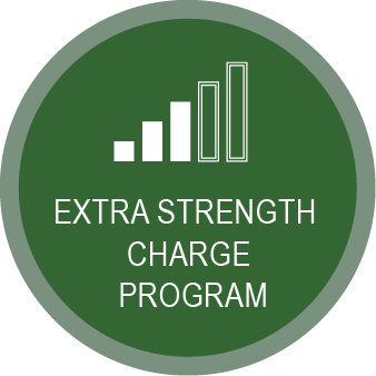Link to Sewer Extra Strength Charge