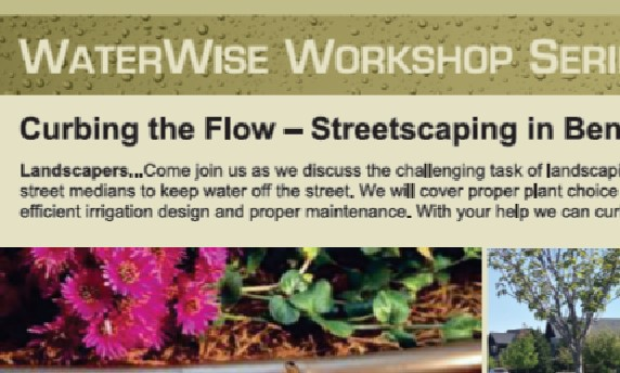 Curbing the Flow Workshop Link to Flyer