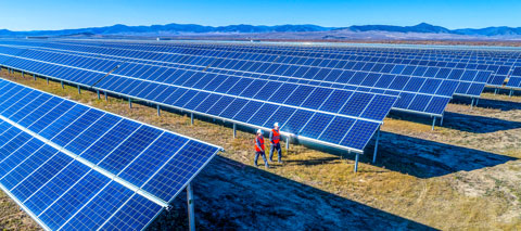 Solar panel farm.