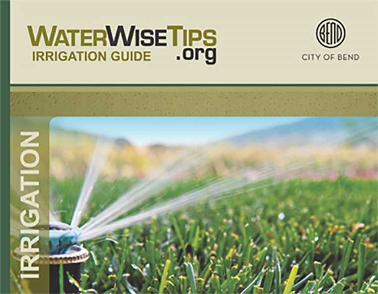 Efficient irrigation sprinkler watering grass