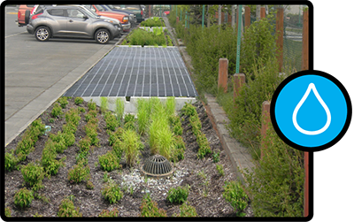Image and icon depicting a rain garden for capturing stormwater.