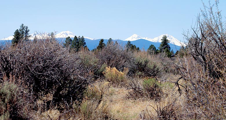 mountains and sagebrush in Bend