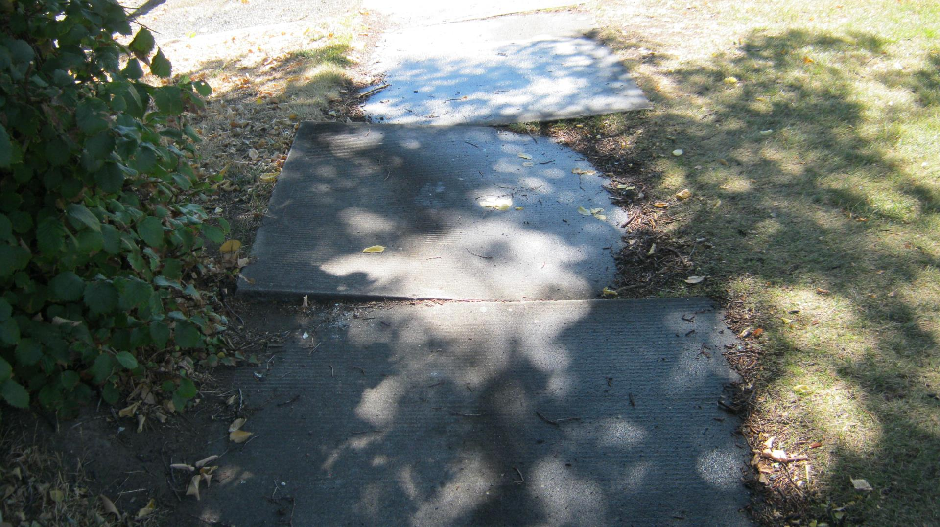 Example of Damaged Sidewalk