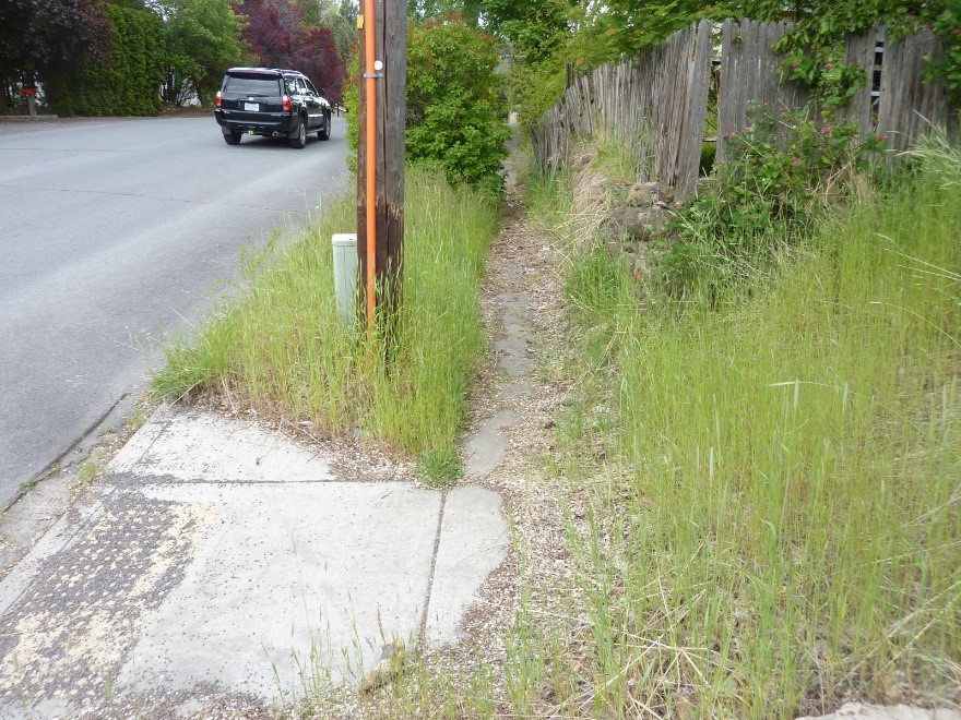 Shepard Rd 2 Before Photo - overgrown vegetation, sidewalk ending in the middle of the block.
