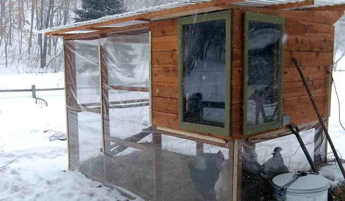 cold-weather-chicken-coop