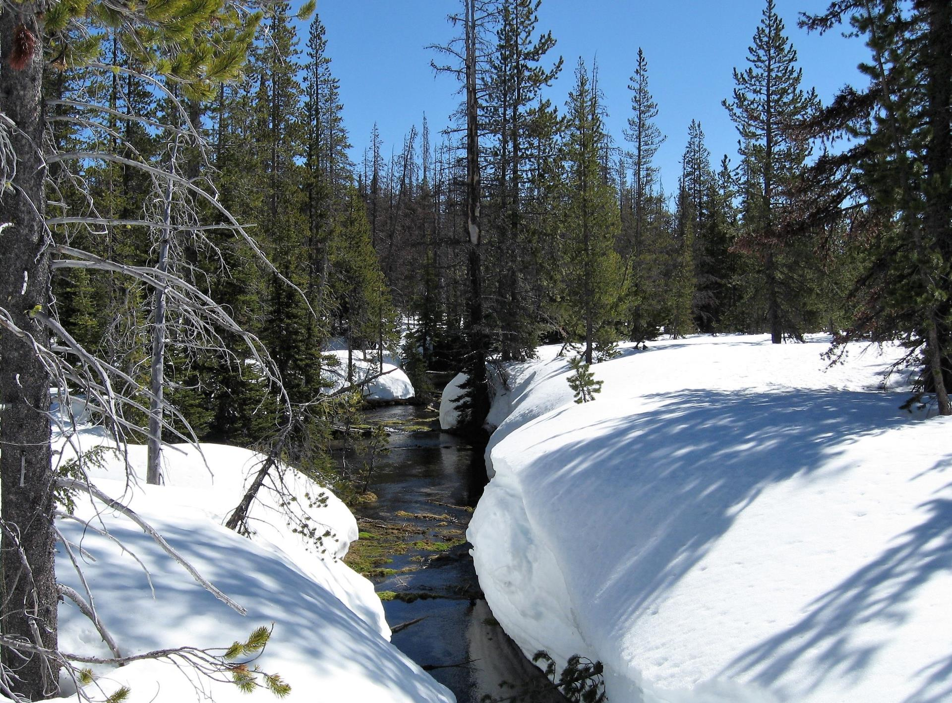 A photo of a snow covered landscape at the Bend Municipal Watershed