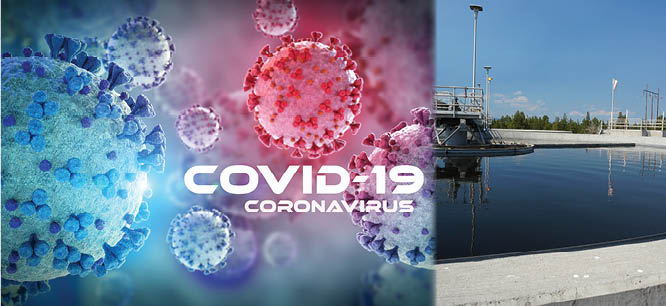 COVID-19 Virus and Wastewater Art