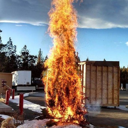 Christmas tree engulfed in flames.